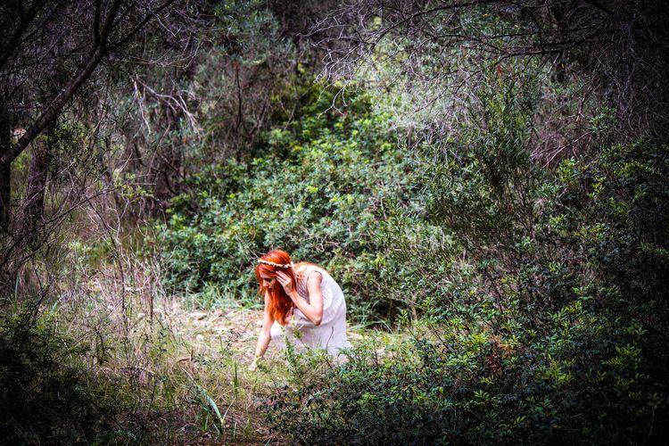 sarah-bosque_3